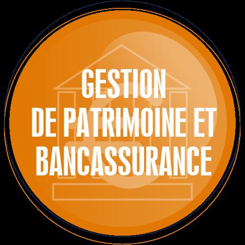 Gestion_de_patrimoine_ecole_commerce_alternance