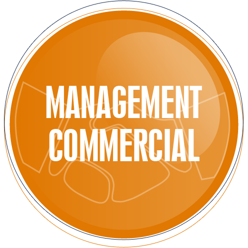 Management_Commercial_ecole_commerce_alternance