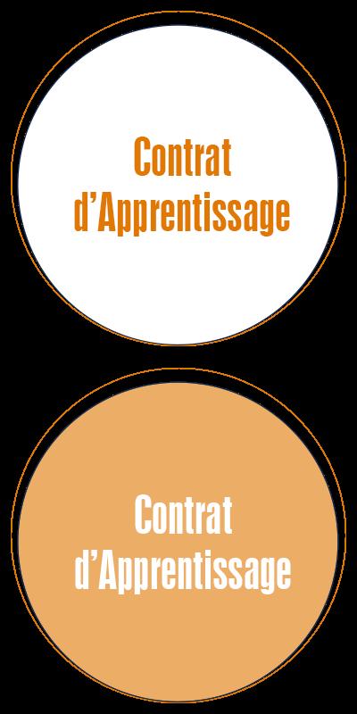 contrat_apprentissage_ecole_commerce_alternance