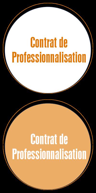contrat_pro_ecole_commerce_alternance