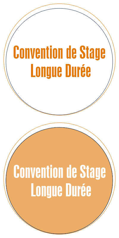 convention_stage_ecole_commerce_alternance